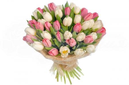 Букет из 49 Тюльпанов в упаковке